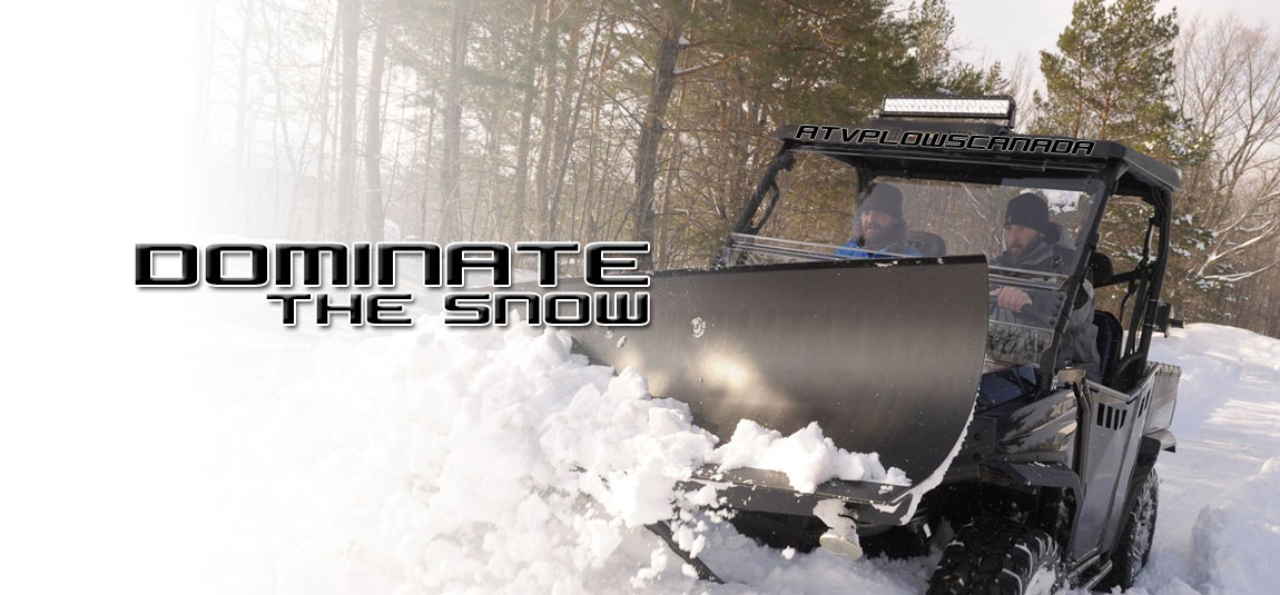 dominate the snow